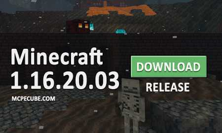 Minecraft PE 1.16.20 for Android